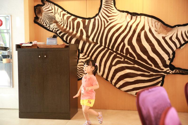 斑馬斑馬 可愛的斑馬